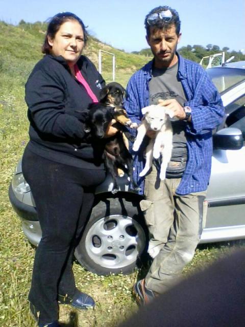 """""""Salvatori"""": Morena e Saverio con i cuccioli trovati"""