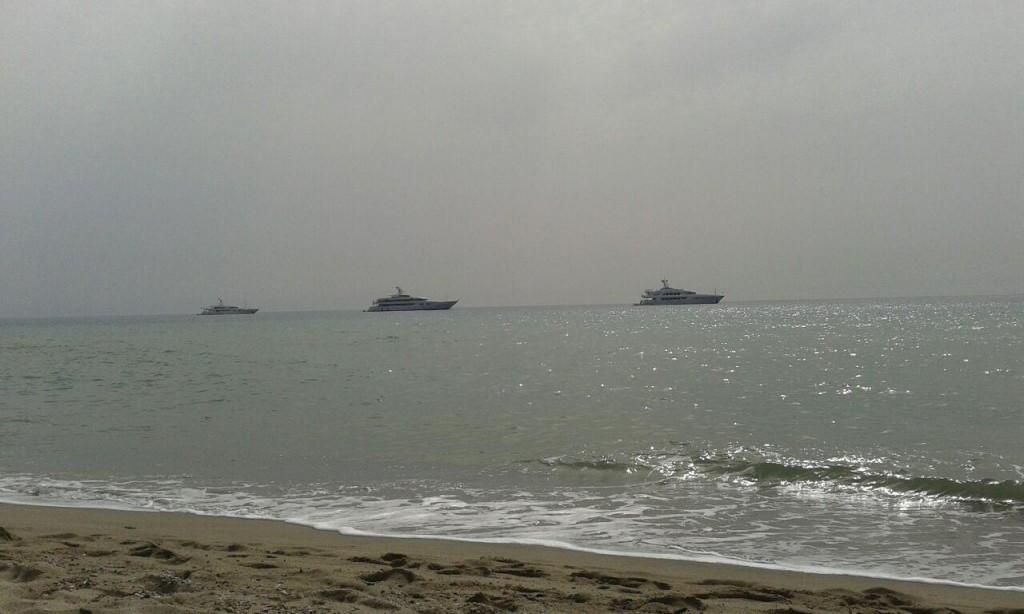 I tre panfili avvistati ieri a pochi metri dalla spiaggia di Squillace