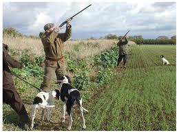 battuta di caccia