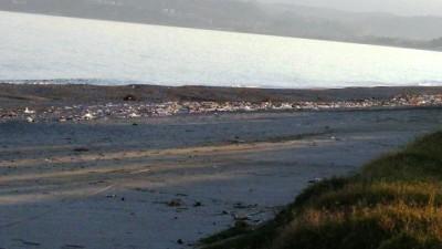 La spiaggia invasa dai rifiuti